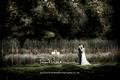 Lizzie and James' Wedding
