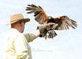 Cliff Grand-Scrutton with Wheatley Birds